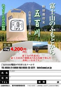H29富士吉田五百川10kg玄米